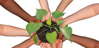 Kolaborasi dan Kerjasama
